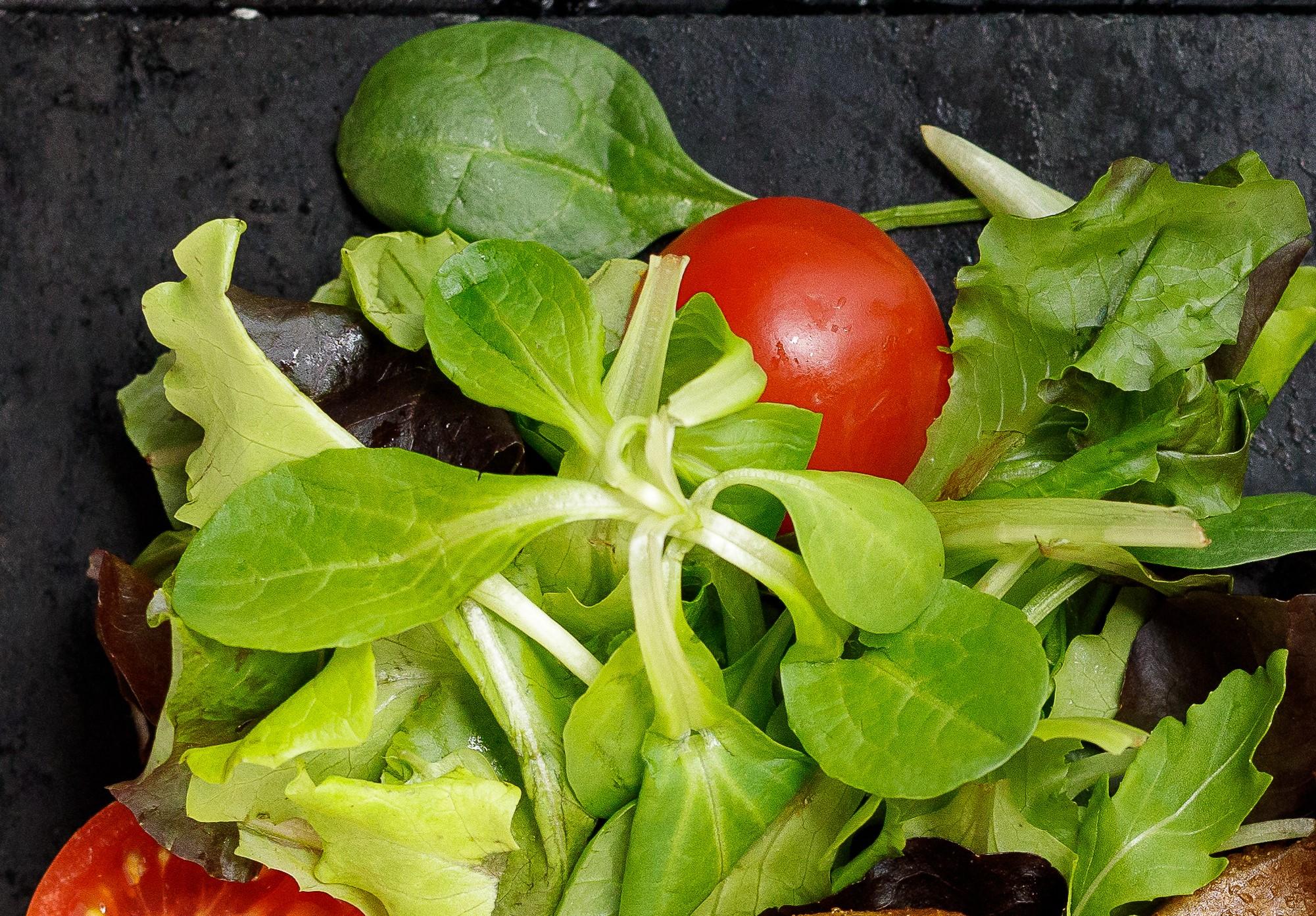 focus salata
