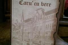 brosura-cartonata